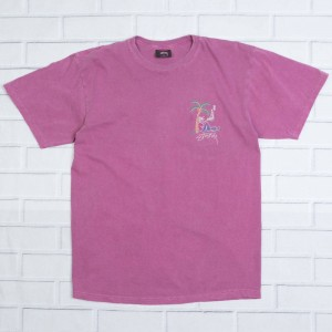 Stussy Men Rub A Dub Pigment Dyed Tee (red / berry)