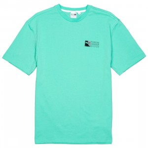 Puma Men RS-0 Tee (green)