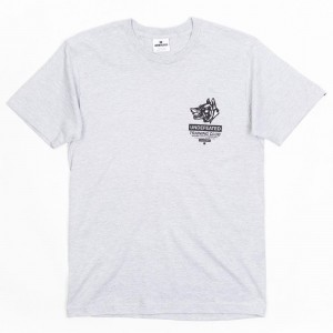 Undefeated Men Training Club Tee (gray / heather)