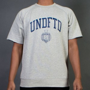 Undefeated Men College Short Sleeve Crewneck Sweater (gray / heather)