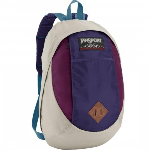 JanSport Tenaya Backpack (light french grey / purple pizazz)