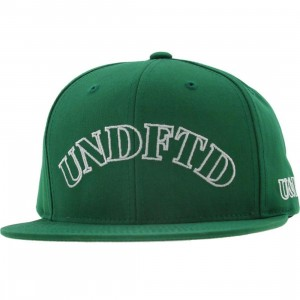 Undefeated U And D Starter Snapback Cap (green)
